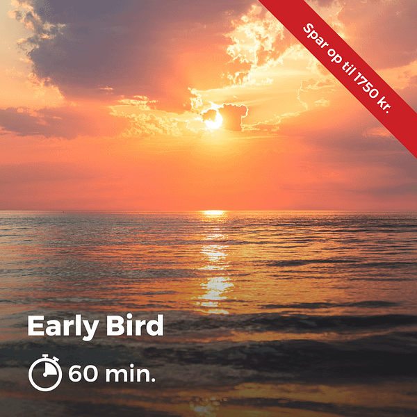 Early Bird 2
